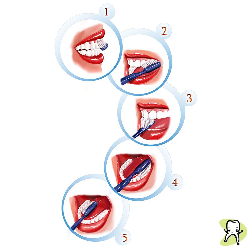 četkice za zube pranje zuba